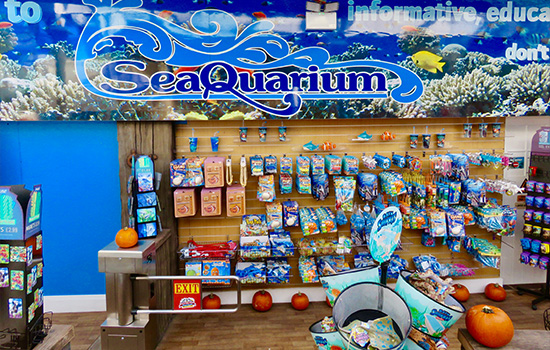 Sea-Quaruim-In-Clacton